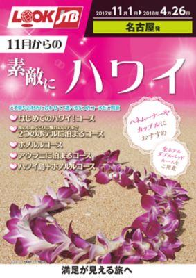 【11月〜4月】素敵にハワイ・アメリカ